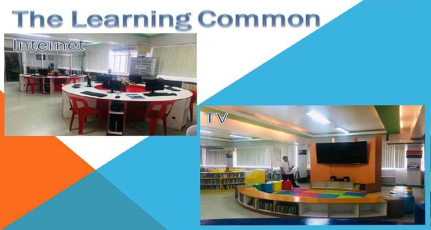 The learning common