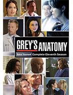 Doctor greys anatomy