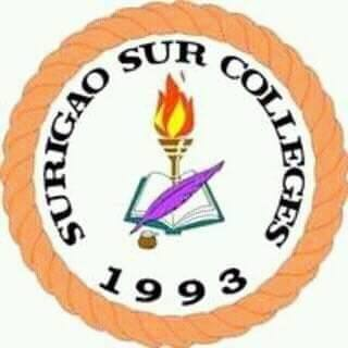 Surigao sur colleges