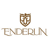 Enderun colleges logo